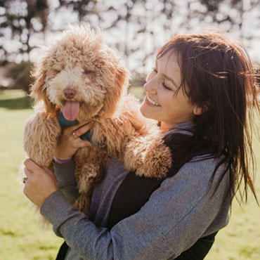 goldendoodle Connecticut breeder network