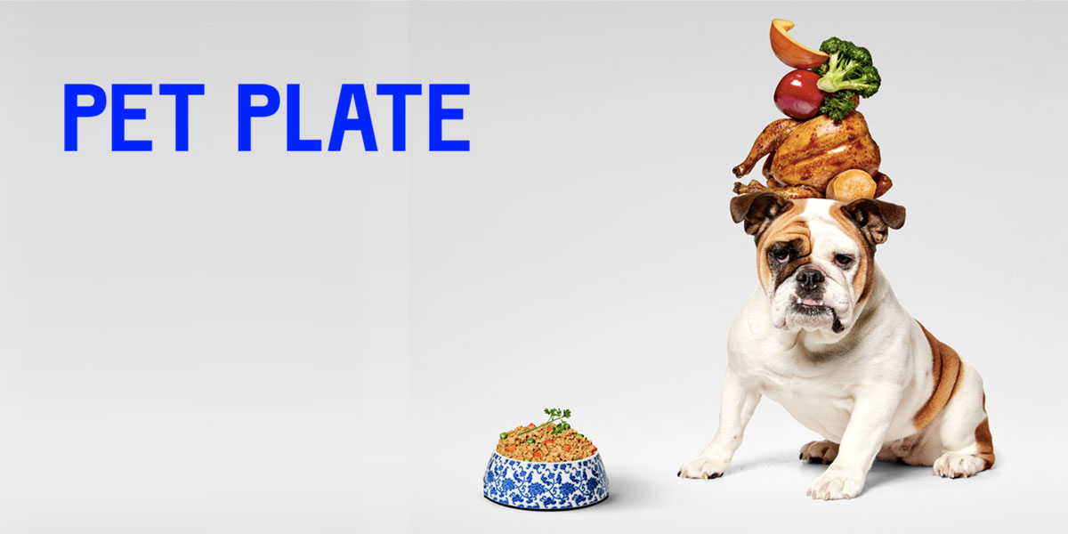 Pet Plate Review 2019: Does Your Dog Really Need Human-Grade Food?